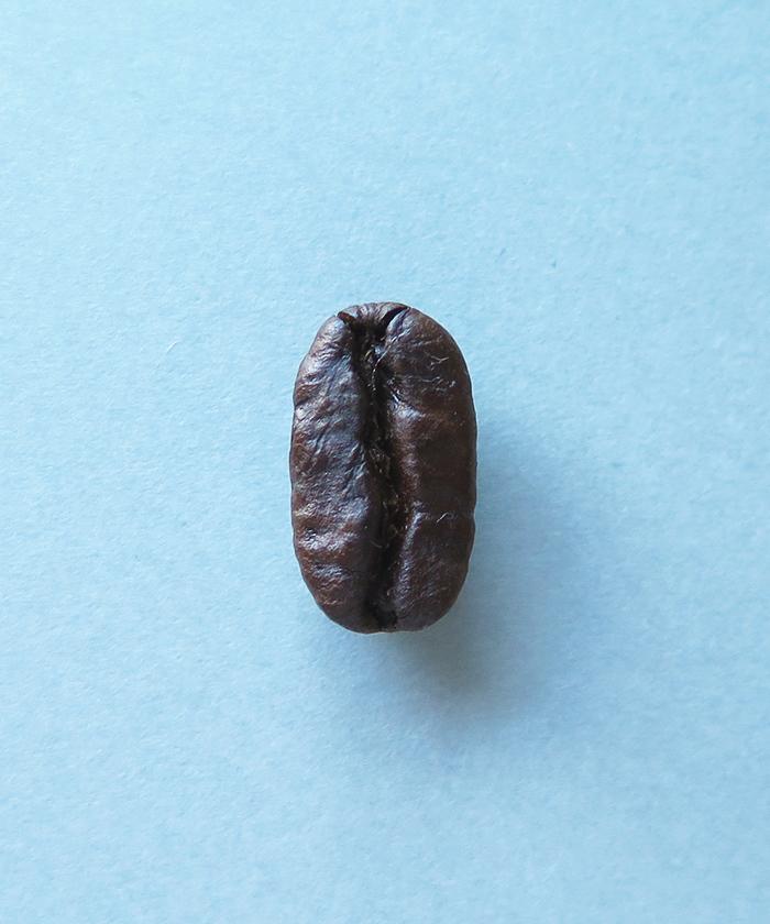 ストロールガレージ ビーンズジュエリー コーヒー豆ネックレス ガレージビーンズ 珈琲豆アクセサリー ケニア