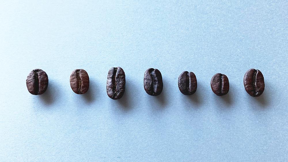 ストロールガレージ ビーンズジュエリー コーヒー好きな人とつながりたい